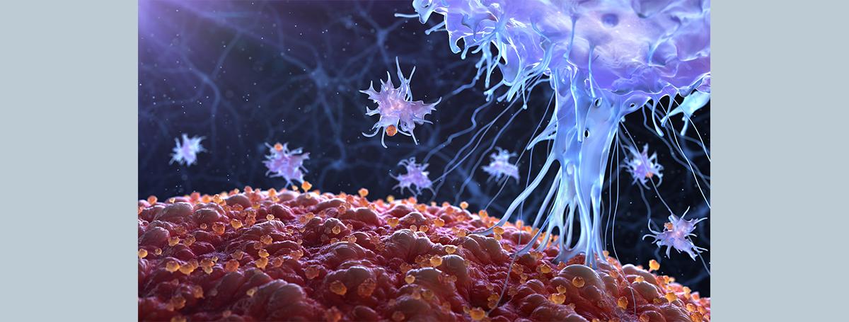是誰把免疫巨噬細胞變壞了?癌細胞吐出的代謝物—琥珀酸