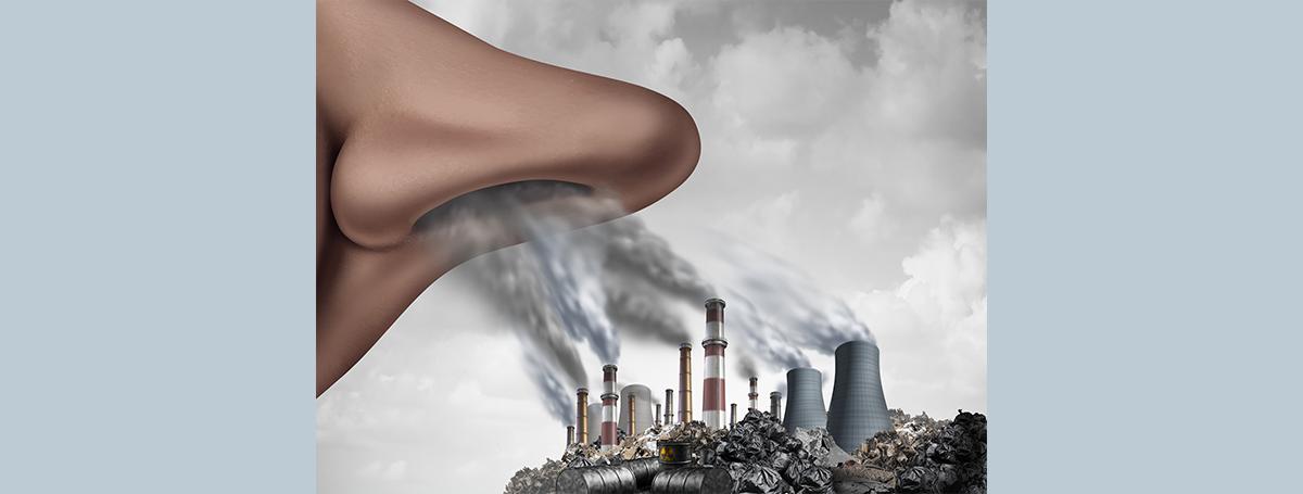環境污染物造成發炎疾病的關鍵原因—免疫代謝平衡!